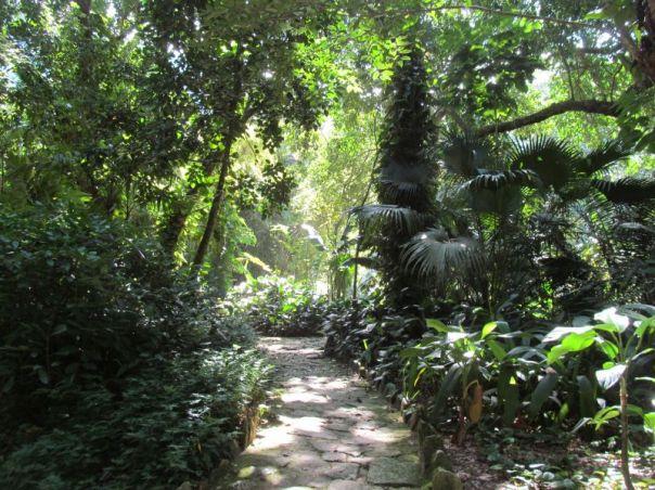 Rio Botanical Garden