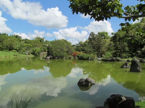 Japanese Garden: Santo Domingo 2