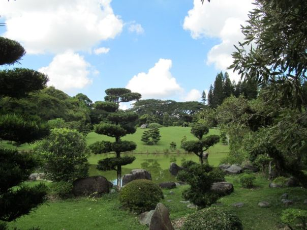 Japanese Garden:  Santo Domingo 4